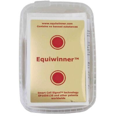 Equiwinner Patches (Box of 10)