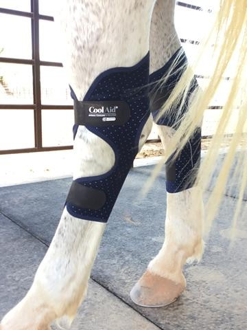 Equine Icing/Cooling Hock Wraps