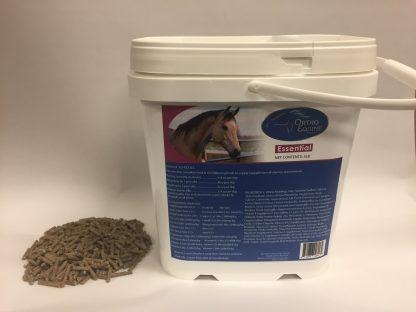 Ortho Equine Essential